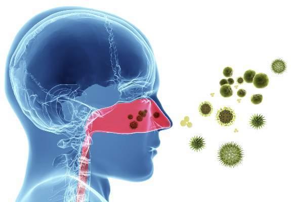 Αλλεργική ρινίτιδα 1